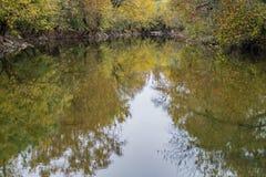 罗阿诺克河秋天视图  库存图片