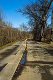 罗阿诺克由威里驱动,罗阿诺克,弗吉尼亚,美国的河林荫道路 免版税图库摄影