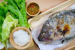 罗非鱼鱼烤与盐和食用辣调味汁 库存照片