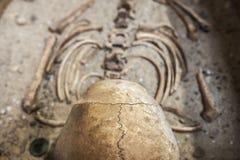 罗马埋葬,头骨细节的Reconstrution 库存照片