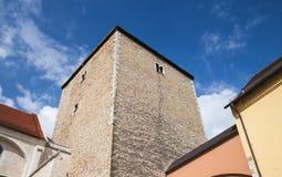 罗马塔在雷根斯堡,德国 免版税库存照片