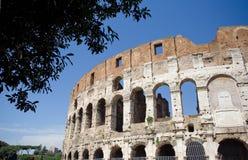 罗马大剧场的colosseum 免版税库存照片
