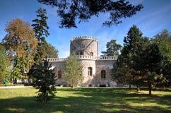 罗马尼亚城堡 免版税库存照片