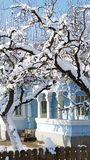 罗马尼亚房子在冬天 免版税库存照片