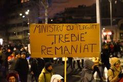 罗马尼亚抗议29/01/2017 免版税图库摄影