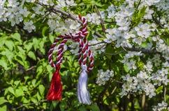 罗马尼亚春天符号 免版税图库摄影
