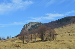 罗马尼亚是美妙的- Creasta Cocosului 库存照片