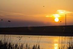 从罗马尼亚的多瑙河三角洲有美好的日落的 免版税库存图片