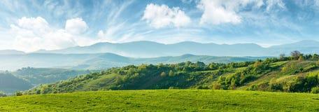 罗马尼亚的美丽的乡下全景  免版税库存照片