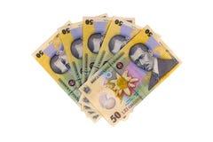 罗马尼亚语的钞票 库存照片