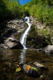 罗马尼亚- Lotrisor瀑布 库存照片