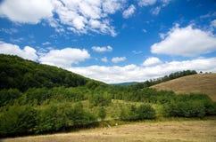 罗马尼亚- Pesteana沼泽(无底的湖) 免版税库存照片