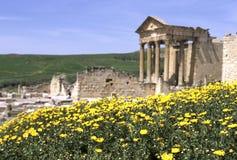 罗马废墟突尼斯 免版税库存照片