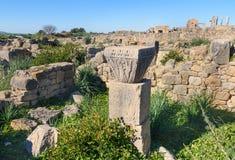 罗马废墟,古老罗马市Volubilis 摩洛哥 免版税库存图片