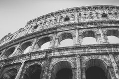 罗马斗兽场或大剧场,亦称Flavian圆形露天剧场是省略圆形露天剧场在中心的 免版税库存图片