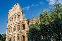 罗马斗兽场的墙壁的细节在一个明亮的晴朗的夏日在罗马,意大利 免版税库存照片