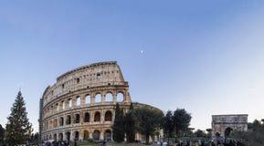 罗马斗兽场罗马意大利竞技场曲拱科斯坦蒂诺圣诞树 免版税库存图片