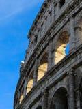 罗马斗兽场,亦称Flavian圆形露天剧场-罗马 库存照片