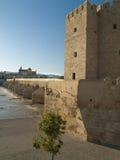罗马桥梁塔在科多巴,西班牙 图库摄影