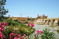 罗马桥梁,科多巴 库存照片