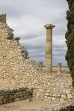 罗马的列 免版税库存照片