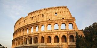 罗马的colosseum 免版税库存照片