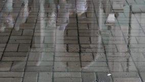 罗马街道雨被浸泡的鹅卵石  影视素材