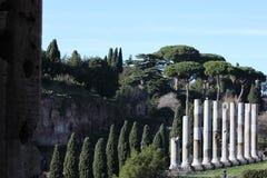 罗马论坛 免版税图库摄影