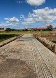 罗马路面做了马赛克在嘉藤帕福斯考古学公园,塞浦路斯 在RomeÂ的房子州长的史前路  ? 免版税库存照片