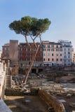 罗马过去和存在 库存图片