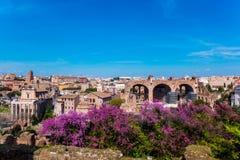 罗马都市风景在罗马斗兽场附近的 免版税库存照片