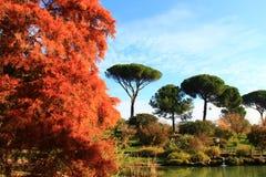 罗马,别墅多利亚Pamphili 库存照片