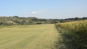 罗马,意大利- 2018年8月:小型飞机Tecnam回声在一条象草的跑道进来登陆一未铺砌航空航天和,在a以后 股票视频