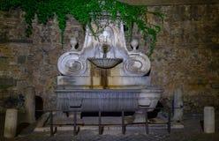 罗马,面具的喷泉 免版税库存照片