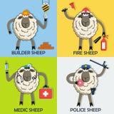 绵羊专业字符传染媒介集合 库存照片