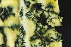 羊乳干酪,与模子的青纹干酪,从法国的南部,有蓝色模子特别静脉的,特写镜头 免版税库存照片