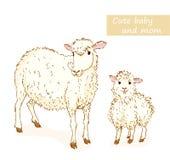 绵羊和羊羔 库存例证