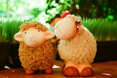 绵羊在bokeh blackground的玩偶家庭 免版税库存图片