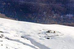 绵羊成群冬天雪山高原的房子 库存图片