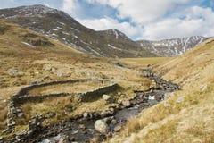 绵羊折叠和水坝 免版税图库摄影