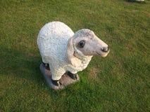 绵羊模型 免版税库存图片