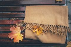 羊毛围巾在长木凳在多雨秋天公园 免版税库存图片