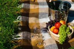 羊毛格子花呢披肩在草、野餐被放置的果子和酒说谎 免版税库存图片