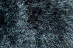 绵羊毛皮灰色羊皮地毯背景纹理 库存照片