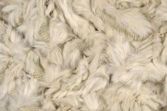 羊毛-毛皮 库存照片