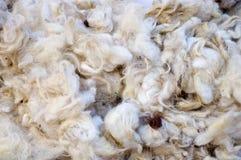 羊毛 免版税库存照片