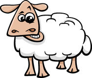 绵羊牲口动画片 免版税库存图片