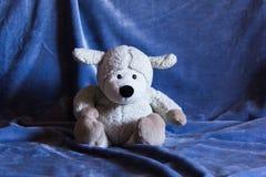 绵羊玩具2 图库摄影