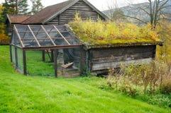 绵羊的老挪威木农业大厦 免版税图库摄影