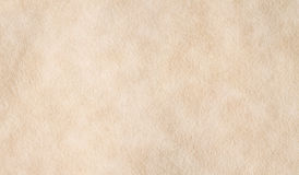 羊皮纸纹理 免版税库存图片